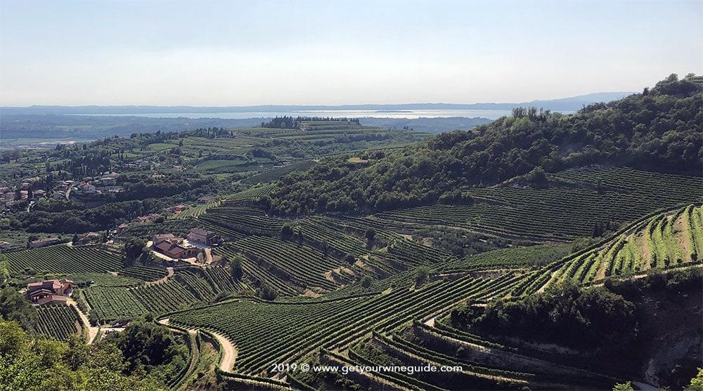 Landscape of Valpolicella