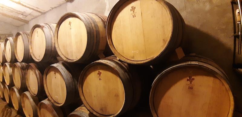 Caucasian oak barrels at Trinity winery in Armenia
