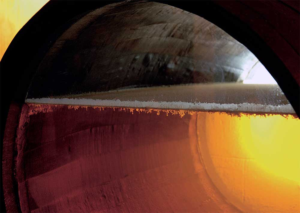 Layer of Flor inside a Sherry cask
