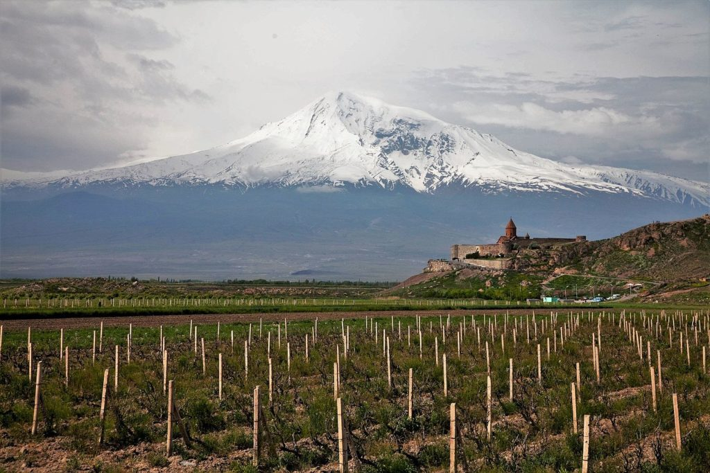 Armenia winery and mount Arearat on the background