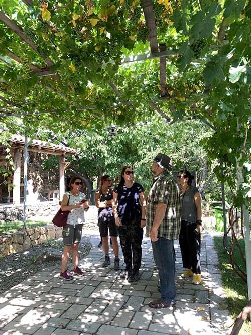 Armenia wine tour